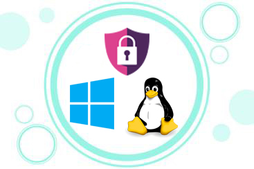 security-linux-windows
